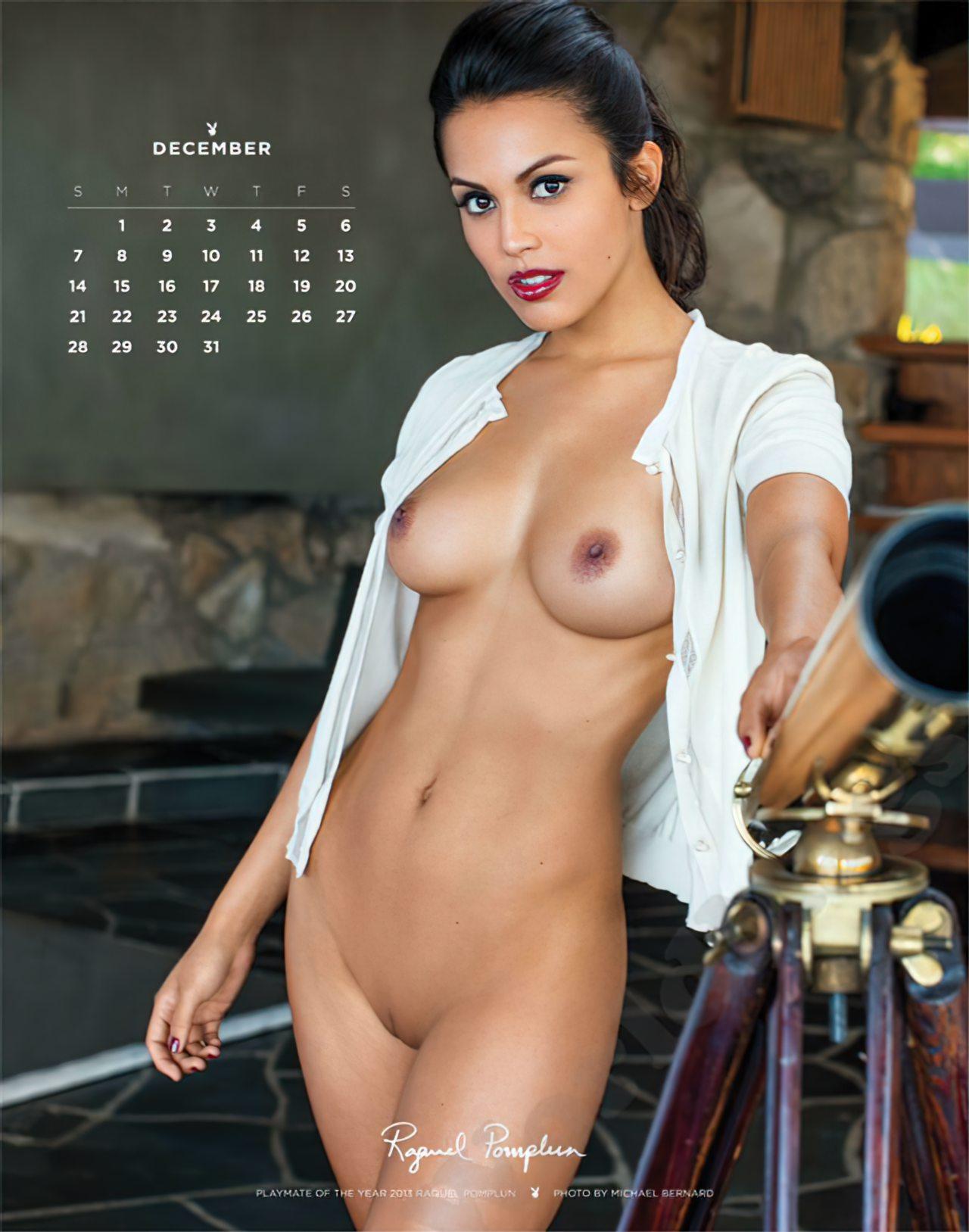 Calendário Playboy 2014 (12)