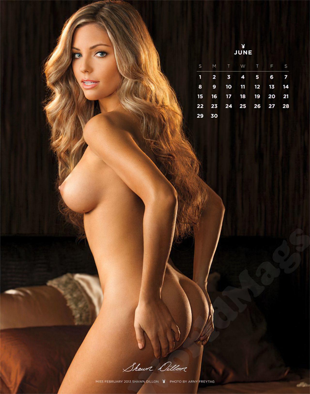 Calendário Playboy 2014 (6)