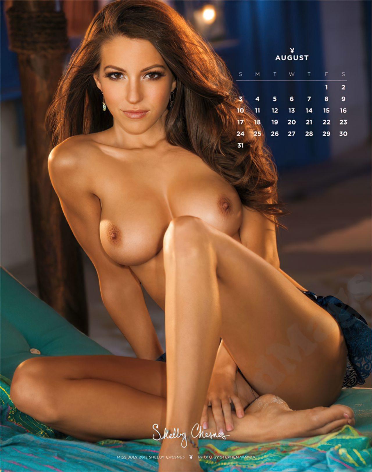 Calendário Playboy 2014 (8)